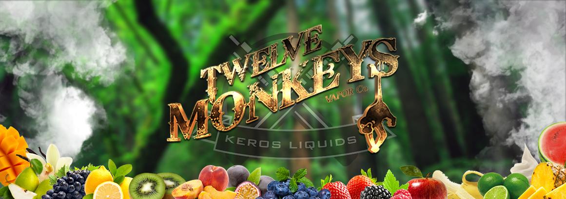 twelve-monkeys-banner